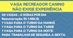VAGA PARA RECREADOR CANINO – 3 Vagas. Remuneração Inicial: R$1.458,12. ( NÃO É EXIGIDA EXPERIÊNCIA NA FUNÇÃO!)